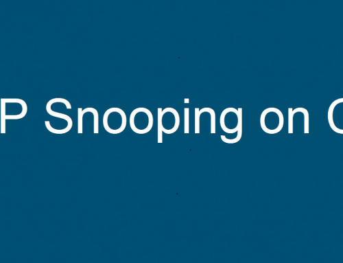 DHCP Snooping დაცვის მექანიზმი Cisco-ს სვიჩზე
